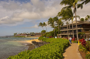 Island of Kauai Launches Website to Help Travelers Find Transportation Amid Rental Car Shortage