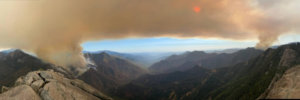 California Wildfires Force Sequoia National Park to Close